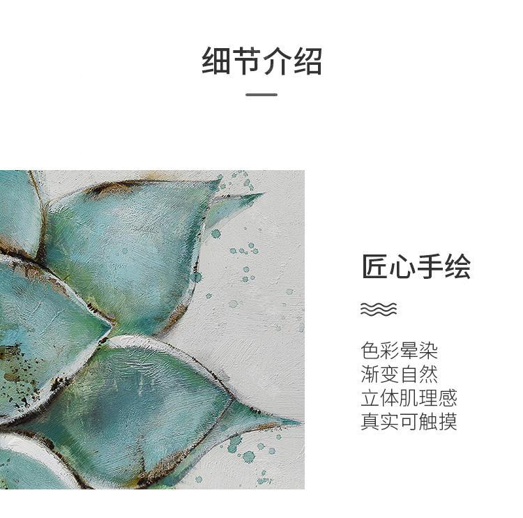 绘美映画品牌露娜莲 清新多肉挂画的详细介绍
